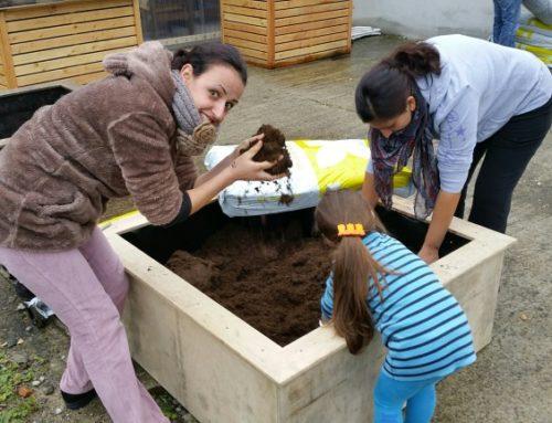 Bepflanzungsaktion in einem Flüchtlingsheim in Xanten